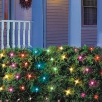 Multicolor Net-Style Lights, Set of 4