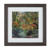 "15"" Colorful Tree in Woods Framed Wall Art"