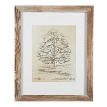 The Grainhouse™ Tree Barnwood Framed Wall Art