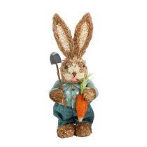 """14"""" Bunny Boy with Carrot Decor"""