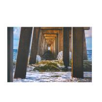 "24""x36"" Under the Pier Indoor/Outdoor Canvas Wall Art"